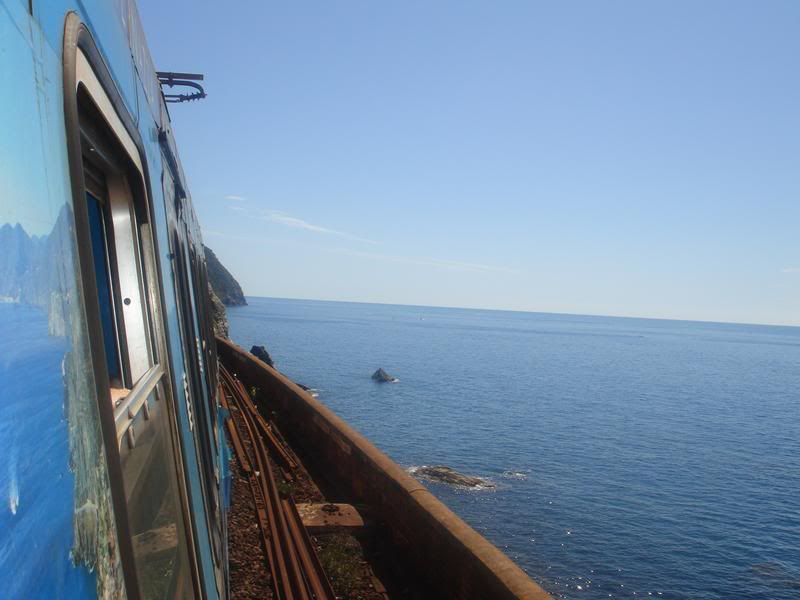 Train in Cinque Terre, Italy