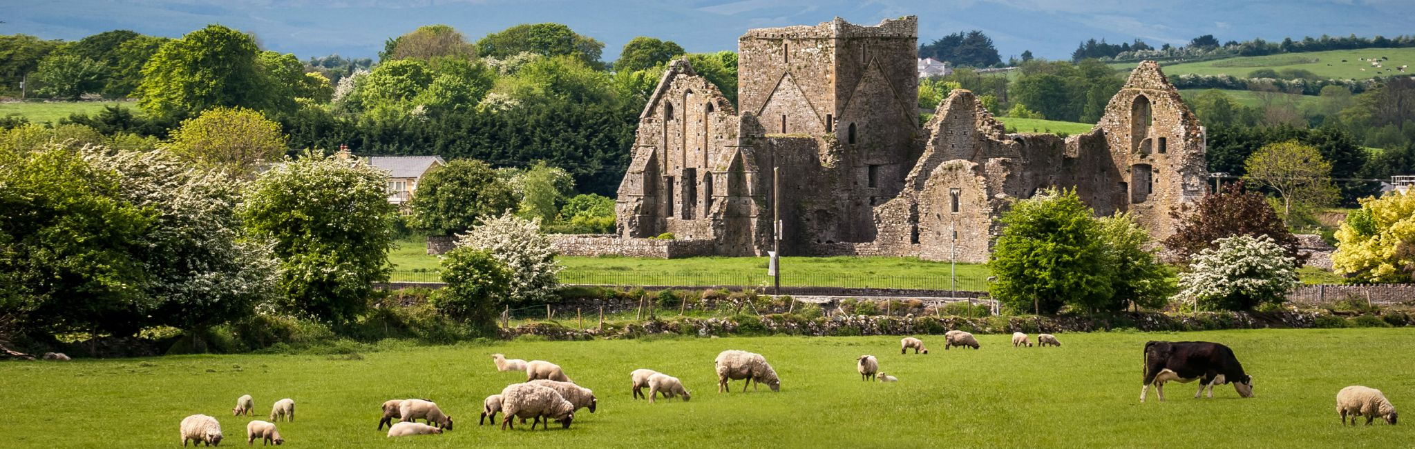 Best Ireland Tours Vacations Travel Packages - Ireland trip