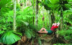 australia rainforest woman reclining on hammock