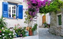building with blue shutters and colorful flowers against the wall