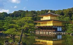 Up to 3 Top Japan Specialists;Compete to Customize Your Perfect Trip