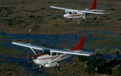 A pair of red and white tour planes flying over a Botswana marsh | Wings Over Botswana