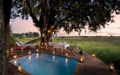 Botswana Duba Plains Suites pool credit: great plains conservation