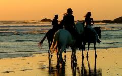Taking a horseback ride on a beach in Costa Rica is a quintessential Costa Rican experience.