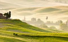 Early morning mist across fields in Tuscany.