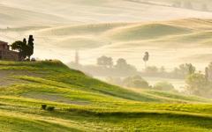 Early morning mist across fields in Tuscany.