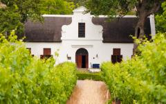 Stellenbosch, Franschhoek, and Paarl are a few of the popular destinations in the Winelands outside Cape Town.