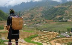 Stunning Views & Diverse Cultures: Sapa