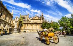 Spain - Carriage near Seville Cathedral with Giralda Tower