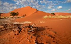 A landscape in Namibia.