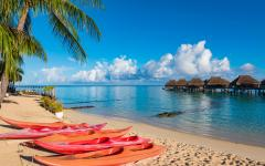 red kayaks lined up on a tropical beach