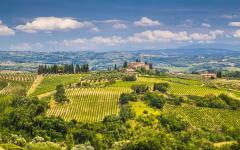 Hilltop view of green Tuscany, Italy landscape and vineyards