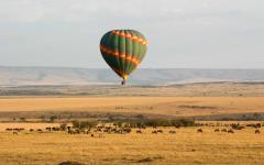 A tour hot air balloon hovering over a herd of wildebeest grazing the Maasai Mara lands | Kenya, Africa