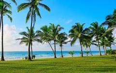 The beautiful tropical coast of Diani, Kenya