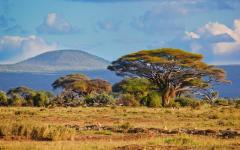 Landscape of Amboseli National Park, Kenya, Africa