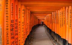 Gateways in Fushimi Inari-Taisha in Kyoto, Japan.