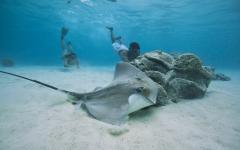 Luxury Bora Bora Vacation Tour: Private Polynesian Cooking Class to Sunset Cruise