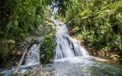 Waterfalls in the Bwindi Impenetrable National Park in Uganda.