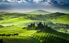 Lush, green rolling hills in Siena, Italy