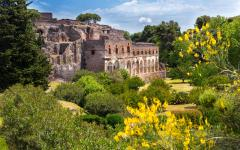 Old Pompeii ruins surrounded by green vegetation | Rome, Italy