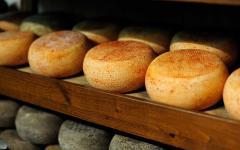 Racks of Pecorino cheese inside a dairy farm.