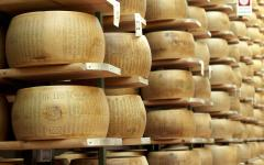 Typical italian cheese Parmigiano Reggiano.