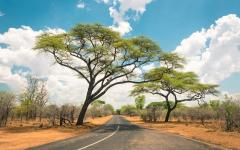 An empty, paved road leading through the Zimbabwe landscape