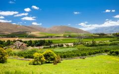 Winelands scenery in Capetown, South Africa