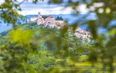 Towards the village of Motovun located in central Istria, Croatia.