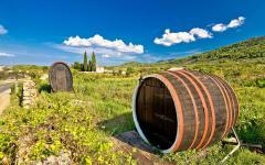 Wine barrels in Stari Grad, Croatia.