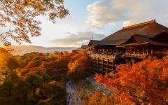 Japan Tour - Kyoto's Kiyomizu-dera Temple during Fall