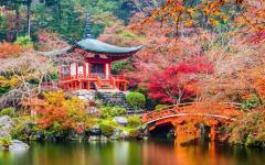 Japan Tour - Kyoto's Daigoji Temple in Autumn.