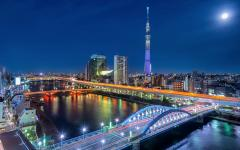 Japan Tour - Tokyo's Cityscape at Night