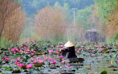 Scenic route to Huong Pagoda, Hanoi, Vietnam.