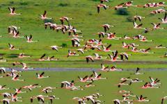 africa_tanzania_ngorongoro-crater