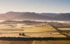 a view across the vineyards of the yarra valley on a misty day in victoria