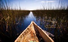 View of the Okavango Delta from a mokoro canoe | Botswana, Africa