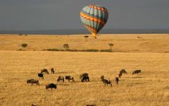 Hot air balloon ride over Masai Mara Kenya Africa