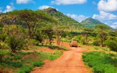 View of the Kenyan savanna on a red dirt road