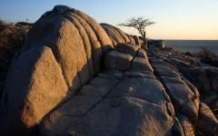 A view of Lekhubu Island in Botswana.