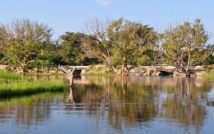The Thamalakane River in Maun, Botswana, Africa