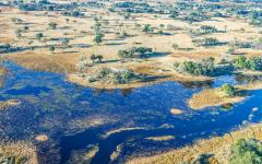 Aerial view of Okavango Delta.