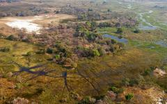 Bird's eye view of the Okavango Delta | Botswana, Africa