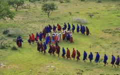 The Masai tribe doing a maasai dance ritual in colorful cloaks   Kenya, Africa