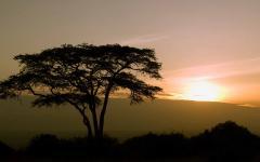 Sunrise over Nairobi in Kenya Africa