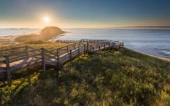 wooden walkway leads to the beach on philip island victoria at sunrise