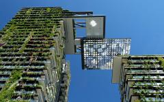 a living tapestry of plants in these vertical gardens on buildings in central park sydney by the botanist patrick blanc