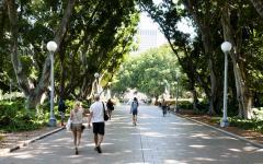 Australia Sydney people walking in Hyde Park