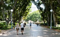people walk through hyde park on a warm day in sydney