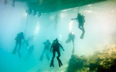 Blue hole scuba divers.